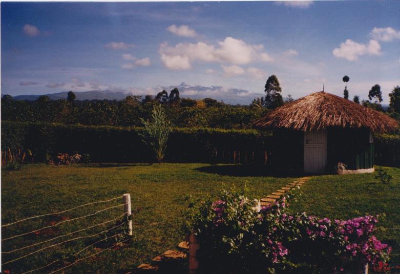 My Dream Part 2 Pic of farm